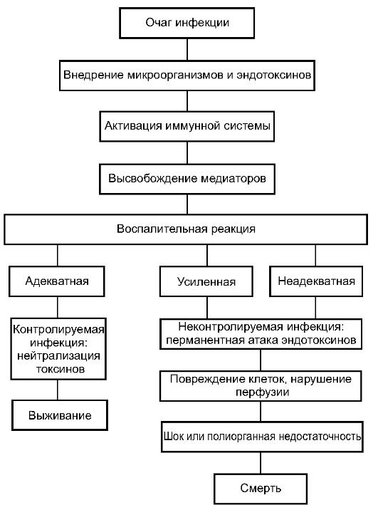 Принципы лечения сепсиса
