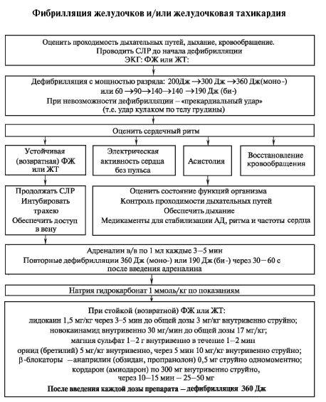 Алгоритм СЛР при фибрилляции