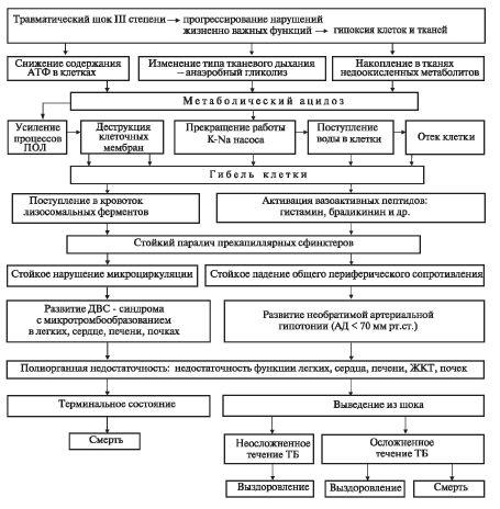 Схема патогенеза